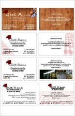 grafica-duea-visit-card-evolution